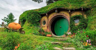 5 posti bizzarri in cui dormire con Airbnb